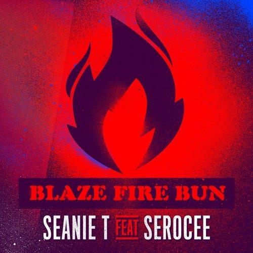 seanie_t_blaze_fire_bun